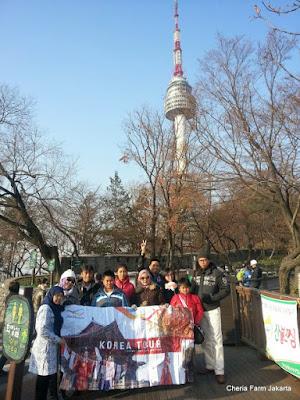 Tour Halal Korea Selatan