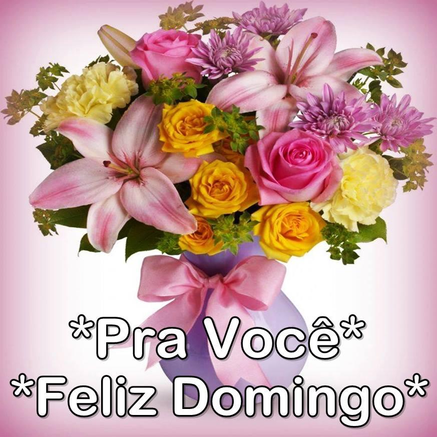 Amado Uma flor para cada mulher do mundo : Feliz Domingo! LU15