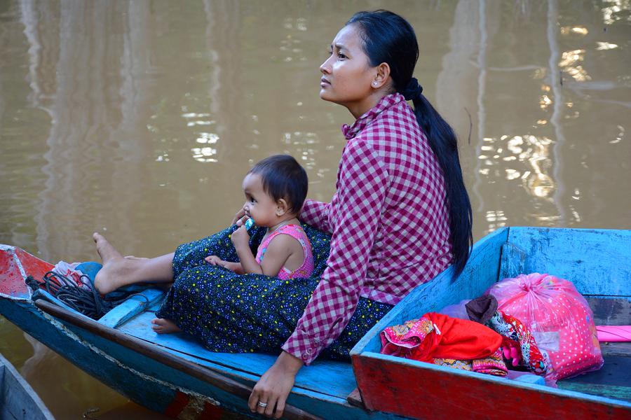 lasy namorzynowe w kambodży