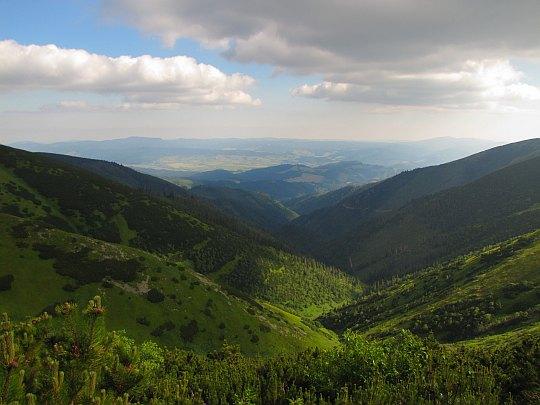 Dolina potoku Mlynná widoczna spod Chaty Štefániká.