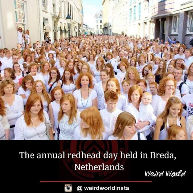 redhead-meeting-in-breda-netherlands