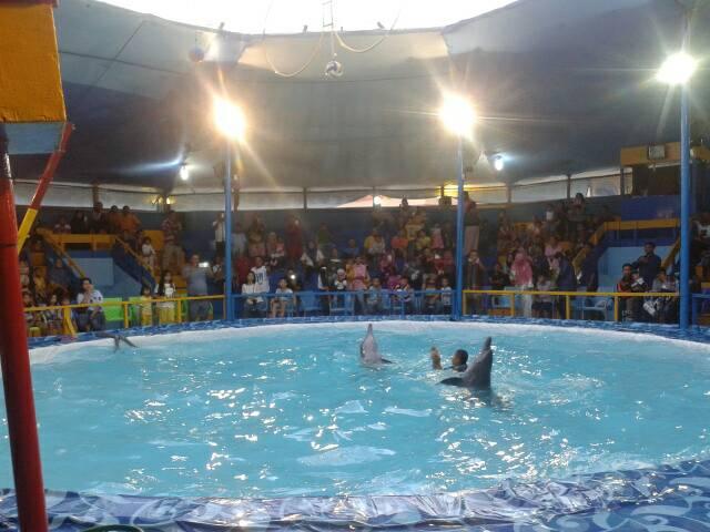 Gemuruh Tepuk Tangan usai Dua Ekor Lumba-lumba Unjuk Kepiawaian Di pelataran Suzuya Plaza, Tanjungmorawa, Deliserdang.