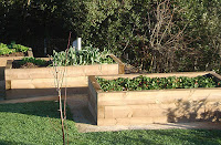 Cajoneras para el cultivo de hortalizas