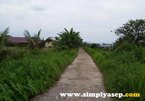 JALAN KAMPUNG :   Tidak ada jalan raya.  Dari rumah dinas cukup berjalan kaki saja menuju ke sekolah tempat mengajar di SMA N 1 Kubu.  Foto Asep Haryono