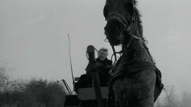 """Γιατί """"σκοτώνουν τ' άλογα πριν γεράσουν"""";"""