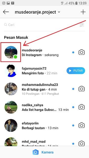 Cara Menyembunyikan Status Online Di Instagram