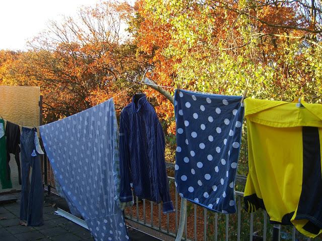 Blauwe en groene was aan de lijn op een dakterras met herfstbomen op de achtergrond.