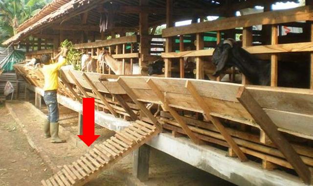 Sejarah Penamaan Desa Anjatan Indramayu