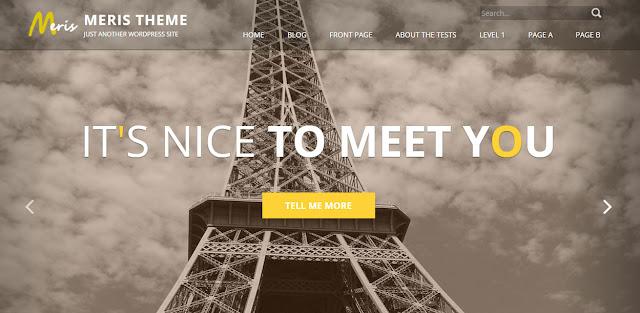 MERIS - Responsive WordPress Theme