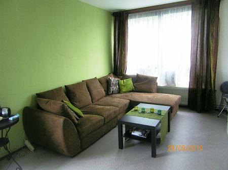 Color Verde  Diseo del Salon en color verde  Cmo arreglar los Muebles en una Pequea Sala de Estar  La Sala y Comedor