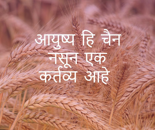 Best Marathi Quotes on Life with Image