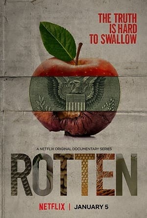 Rotten Séries Torrent Download completo