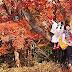 上野樹里週報(10月30日)