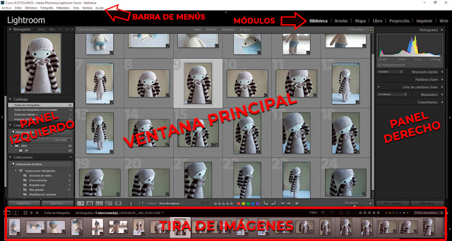 Curso de Lightroom - 07. Biblioteca