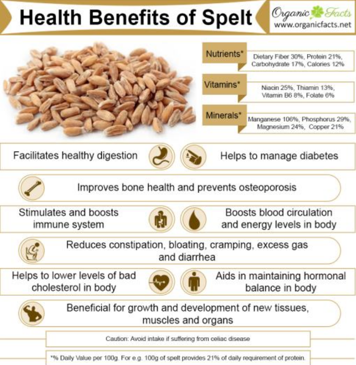 health benefits of grains nutrients vitamins whole - 510×548