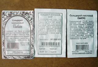 Семена сельдерея / Блог Дача-это просто!