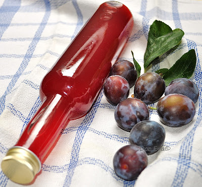 Pflaume (Prunus domestica)