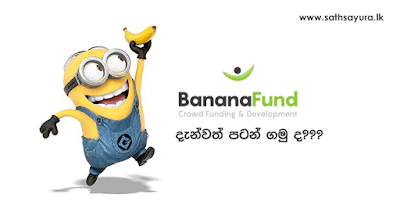 කෙසෙල් අරමුදල (BananaFund) දැන්වත් පටන් ගමු ද? - Start your journey with BananaFund | සත්සයුර (www.sathsayura.lk)