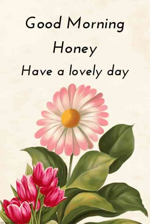 good morning hd image for honey