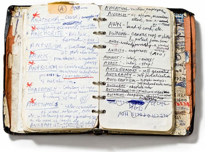 diario, appunti, notes, pensieri, scrittura, Nick Cave, pagine