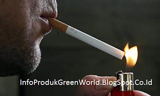 Ini Dia Beberapa Manfaat Rokok Bagi Kesehatan