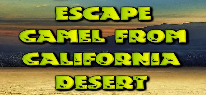 Escape Camel from Califor…