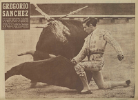 Resultado de imagen de matador de toros Gregorio Sánchez