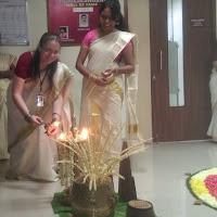 Kerala state tree: coconut