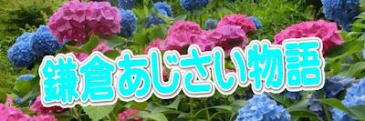 鎌倉あじさい物語