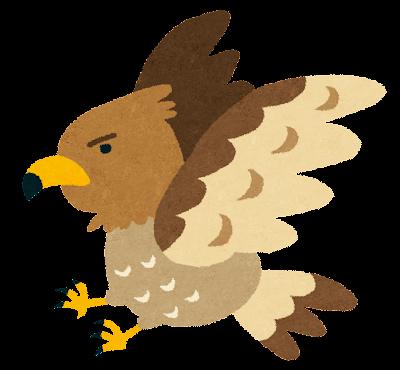 鷹のイラスト(動物)