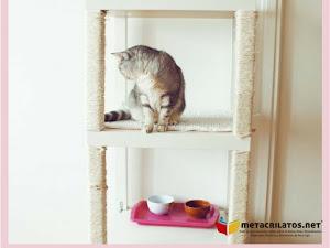 Todo lo que Necesitas Saber de Rascadores para Gatos