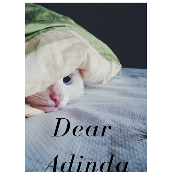 Dear Adinda (30 DAY CHALLENGE BPN HARI KE-21)