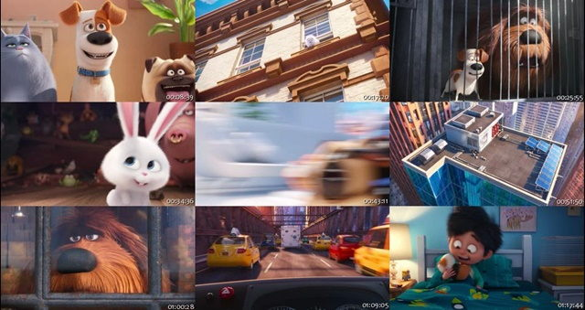 The Secret Life of Pets (2016) DVDRip Latino