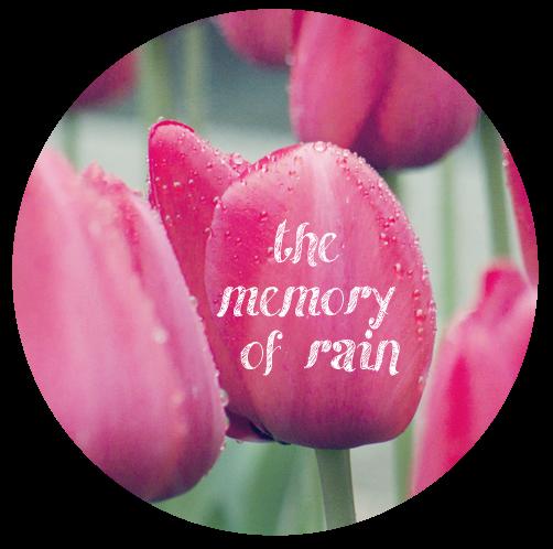 the memory of rain