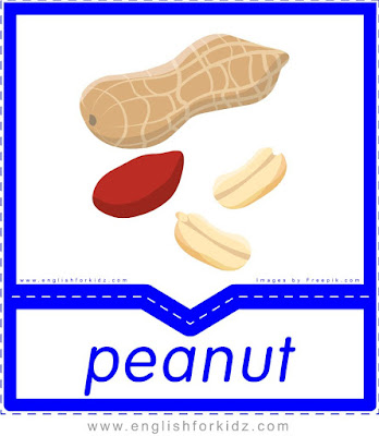 Peanut - English flashcards for the fruits, vegetables and berries topic