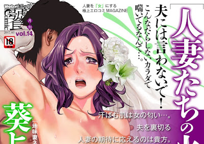 Web Comic Toutetsu vol 11-14 raw zip dl