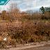 Terrenos abandonados: notificaciones de la Intendencia Durazno empezarán en calle Instrucciones del Año XIII