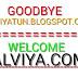 2 Hari Setelah Ganti Domain, Ada Beberapa Dampak yang Terjadi Pada Blog Alviyatun
