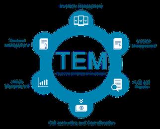 Què és el TEM i per què les empreses haurien de començar a utilitzar-lo