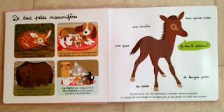 Mes bébés animaux à toucher - Editions MILAN - De très petits mammifères