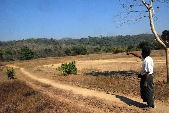 ေအာင္ၿငိမ္းခ်မ္း (Myanmar Now) ● ရခုိင္ေဒသ ပုဂၢလိကသစ္ေတာအစီအစဥ္ကို ေဒသခံတို႔ကန္႔ကြက္