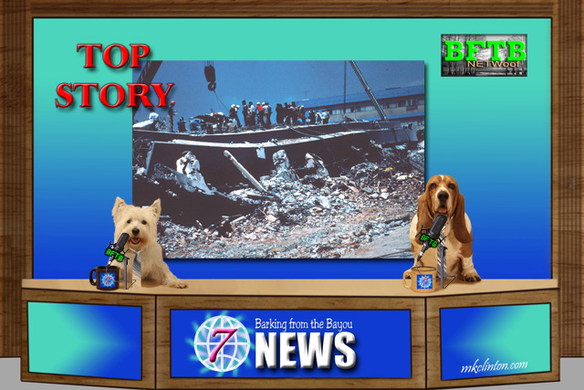 BFTB NETWoof News Top Story on Mexican earthquake and hero dog