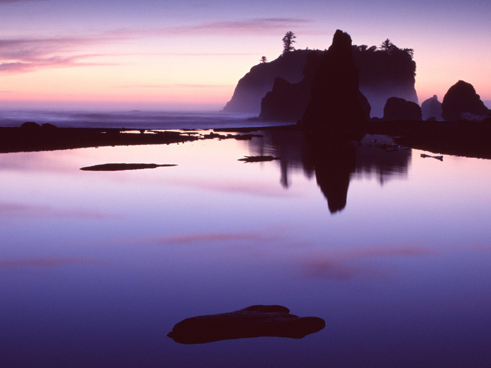 Wallpapers: Olympic National Park Wallpapers
