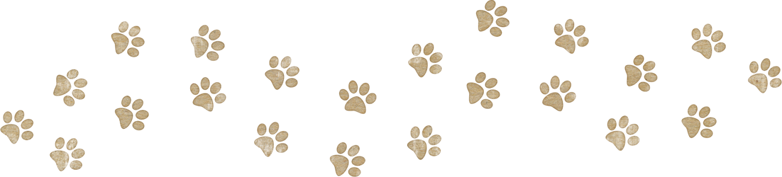 Eso Cats Paw  Billion Pixels