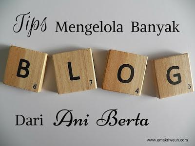 tips mengelola banyak blog