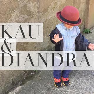 Diandra Arjunaidi - Kau Dan Diandra MP3