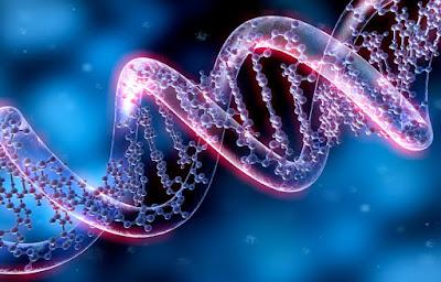 Selezione penalizza geni certe malattie