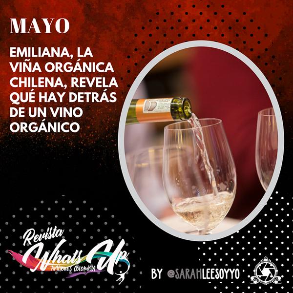 Emiliana-viña-orgánica-chilena-vino-orgánico