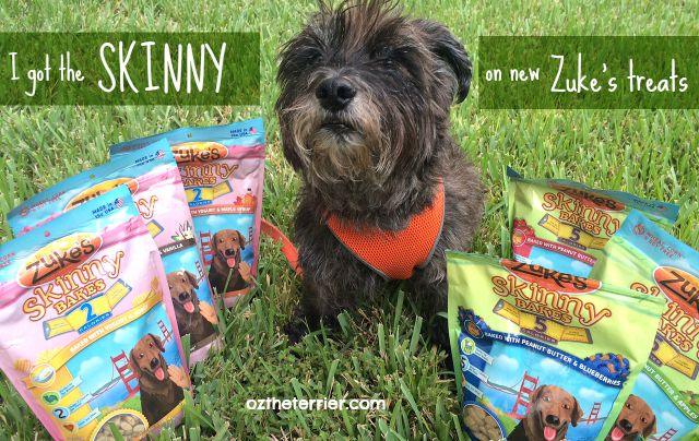 Oz has got the skinny on new Skinny Bakes dog treats by Zuke's