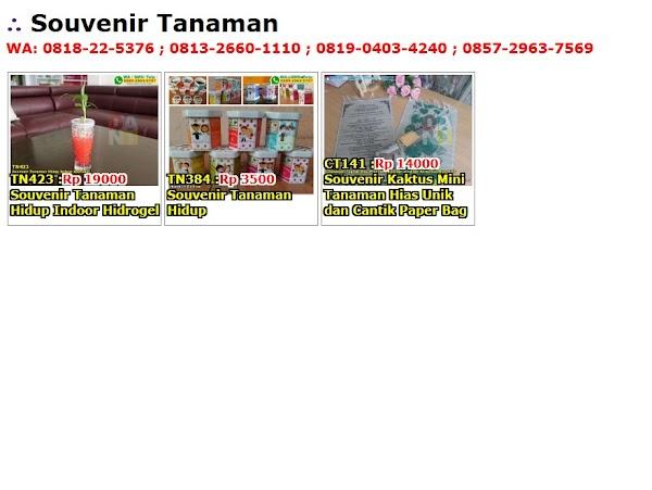 Daftar Harga Souvenir Tanaman